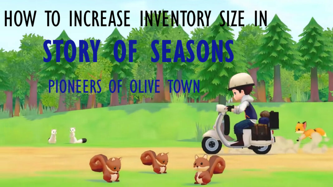 story-of-seasons-pioneers-of-olive-town-how-to-increase-inventory-size