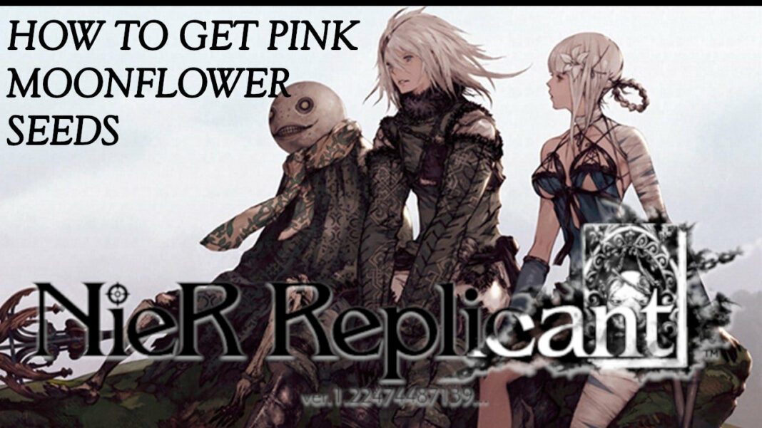 nier-replicant-pink-moonflower-seeds